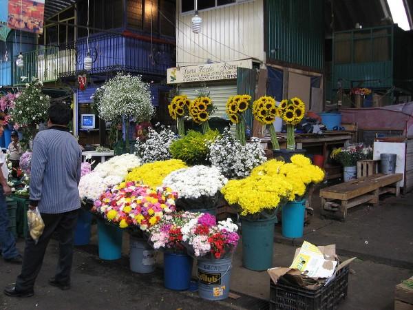 mercado flores jamaica central abasto ciudad mexico df