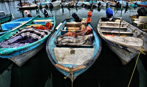 puerto punta de mita riviera nayarit
