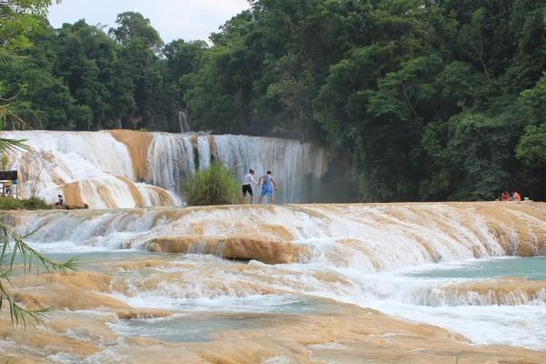 cascada agua azul palenque chiapas