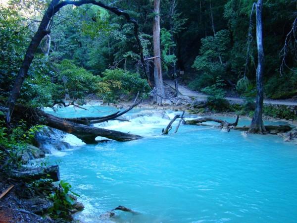 Cascadas en chiapas agua azul misol ha y el chifl n for Piscinas naturales urederra