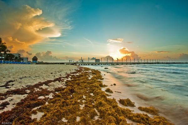 playa del carmen atracciones
