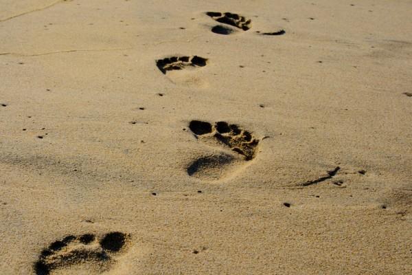 huellas de pie en la playa