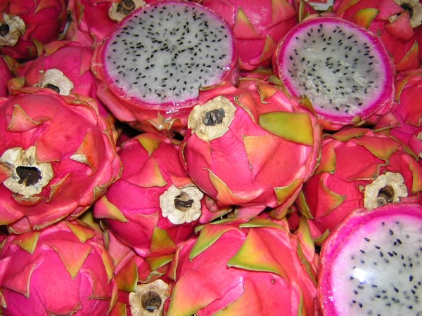 pitaya temporada