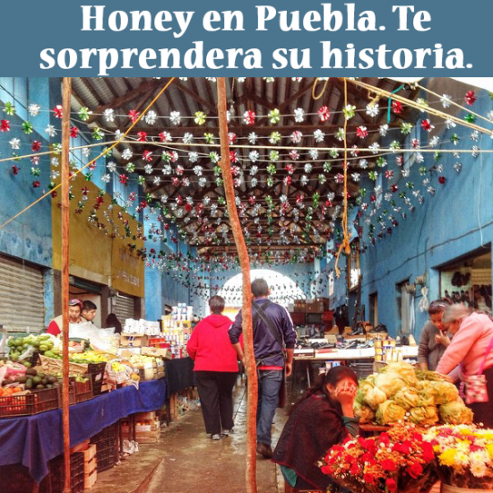 turismo honey puebla mexico