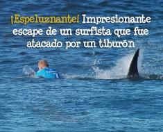 Surfista fue atacado por un tiburón en medio de una competición