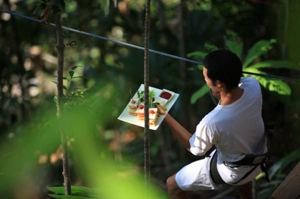 birds nest restaurant thailand