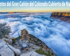 gran canon del colorado arizona