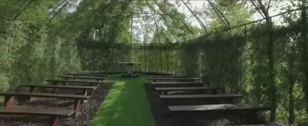iglesia construida con arboles nueva zelanda