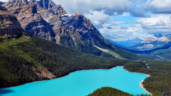 lago peyto canada
