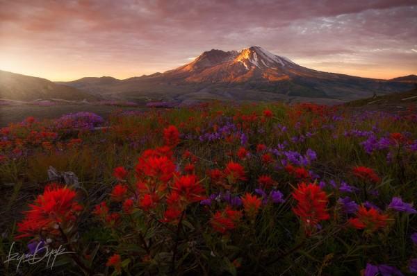Monte Santa Helena, Washington, EE.UU.