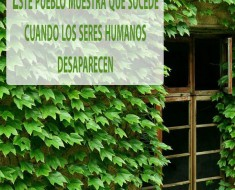 pueblo verde lleno de naturaleza
