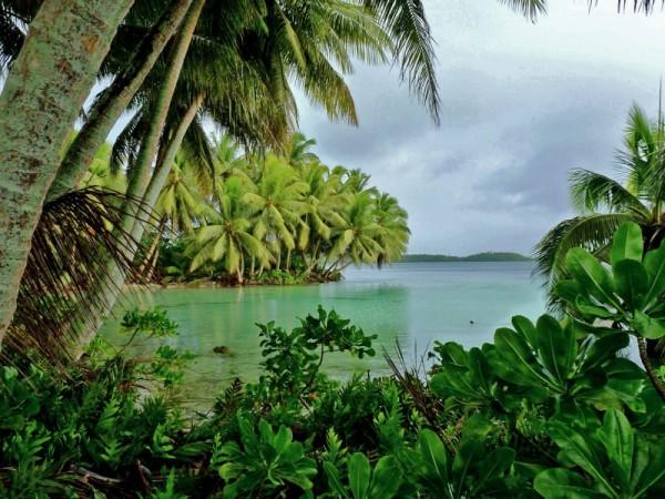 atolon palmyra esporadas ecuatoriales