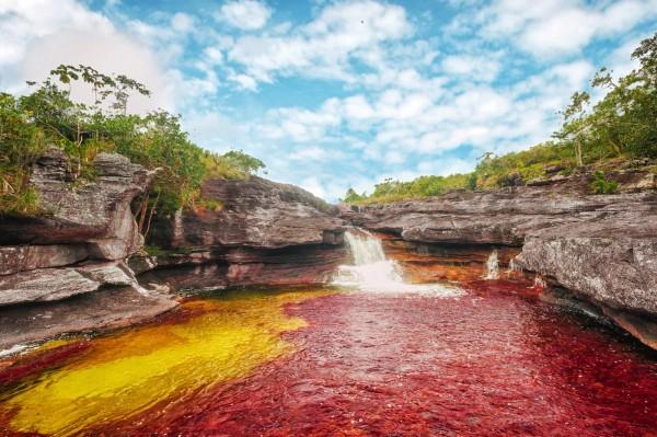 Caño Cristales El Rio de los 5 colores