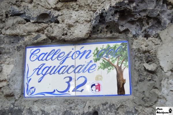 direccion callejon del aguacate coyoacan mexico df
