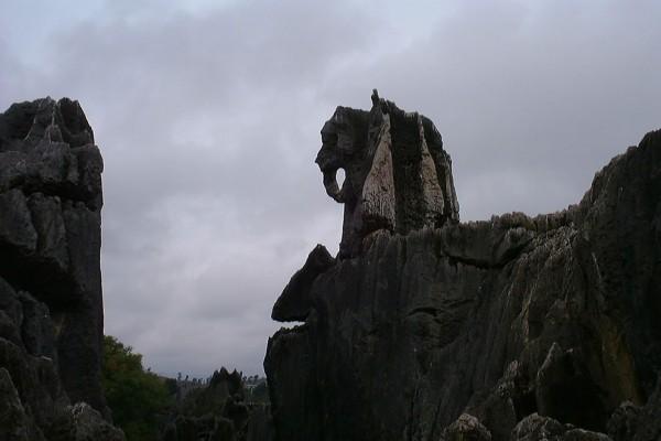 elefante bosque de piedra de shilin