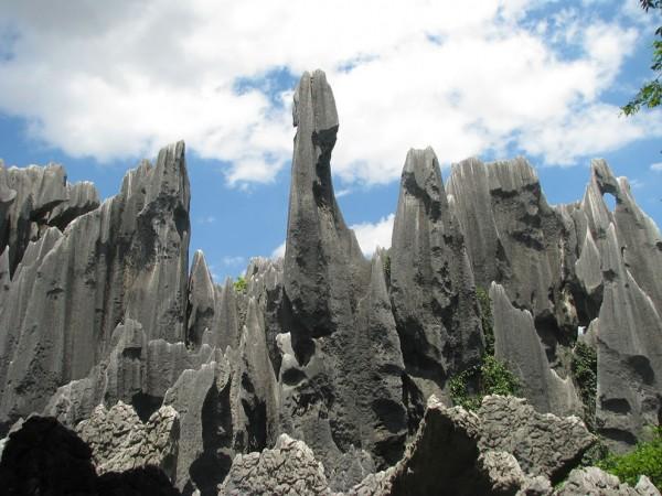 fotos bosque de piedra de shilin
