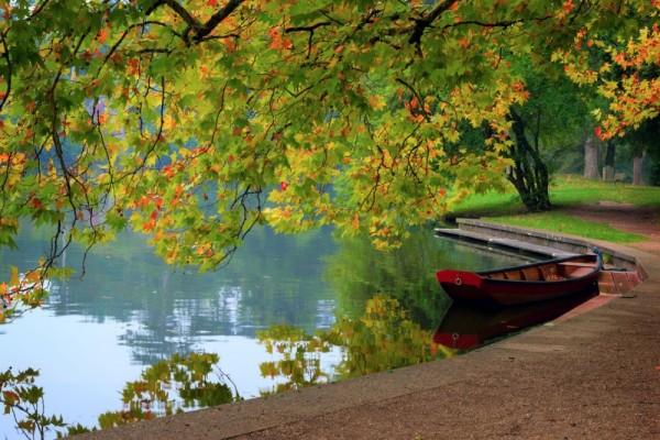 10 fotos de paisajes para disfrutar del oto o coyotitos - Fotos bonitas de otono ...