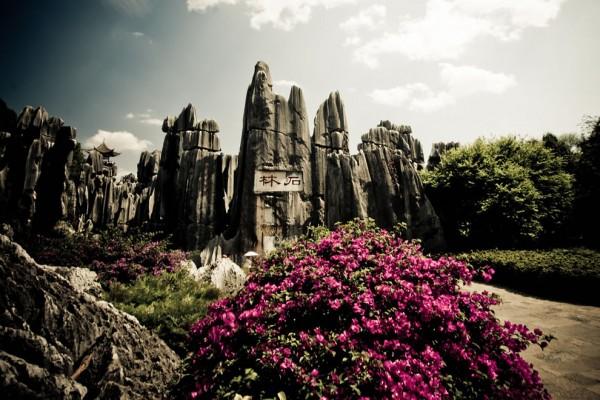 jardinesbosque de piedra de shilin