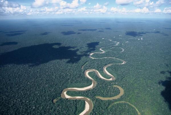 Selva amazónica, Brasil