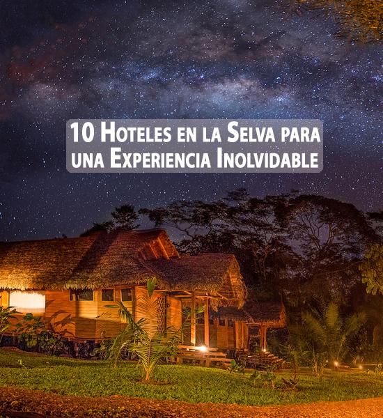 Los 10 mejores hoteles en la selva del mundo coyotitos for Los mejores hoteles boutique del mundo