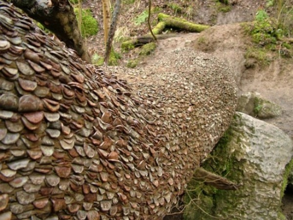 Árbol del dinero en Escocia