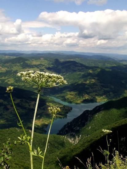 Cañón del río Tara, Montenegro