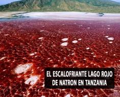 El escalofriante Lago rojo de Natron en Tanzania