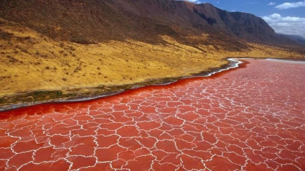 lago rojo natron al norte de tanzania