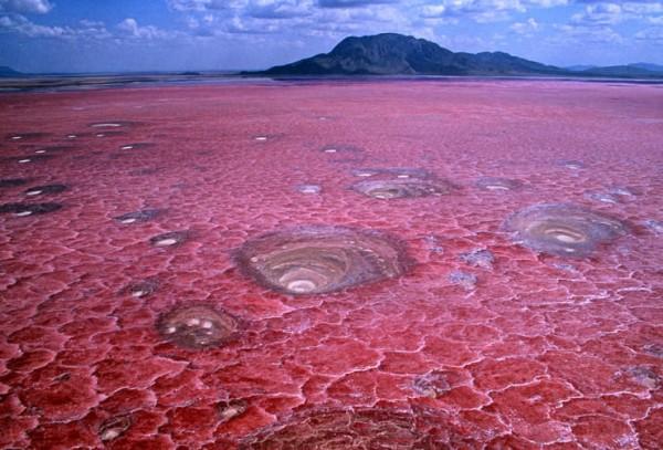 lago rojo natron tanzania africa