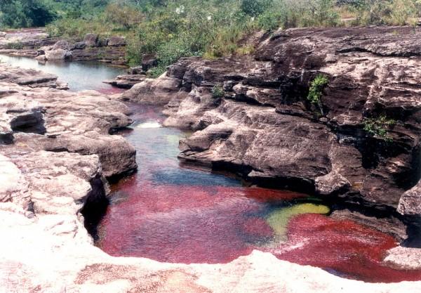 El río Caño Cristales, Colombia