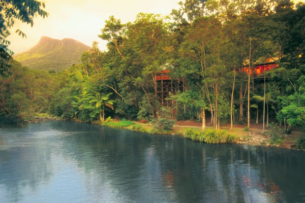 silky oaks lodge daintree australia