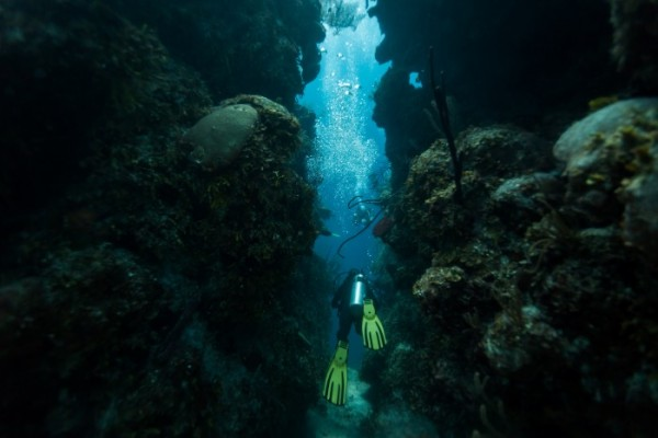 tunel bucear el gran agujero azul de belice
