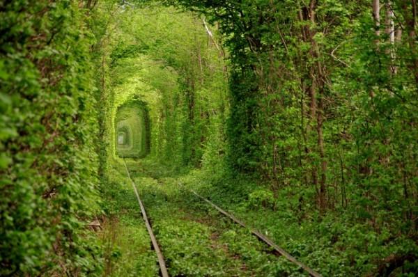 Túnel del amor en Klevan, Ucrania