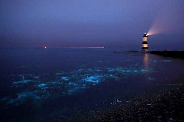 vaadhoo islas maldivas hoteles