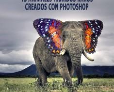 15 animales híbridos raros creados con Photoshop