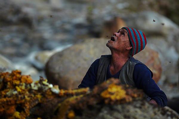 cazadores de miel nepal