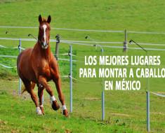 Los mejores lugares para montar a caballo en México