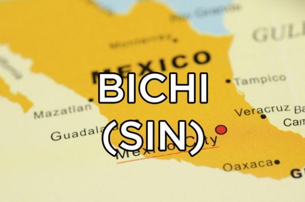 significado bichi mexico