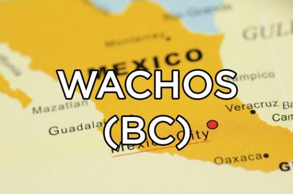 significado wachos mexico