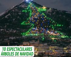 10 espectaculares árboles de Navidad de todo el mundo