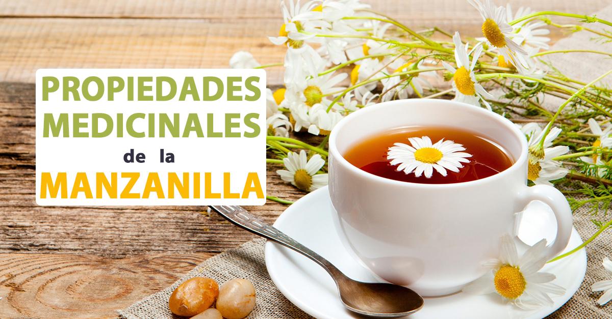 Propiedades medicinales de la manzanilla coyotitos for Manzanilla planta medicinal para que sirve