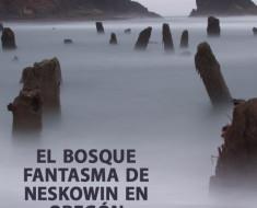 El bosque fantasma de Neskowin en Oregón