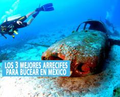 Los 3 mejores arrecifes para bucear en México