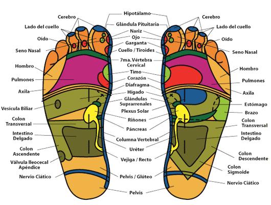 reflexologia beneficios andar-descalzo