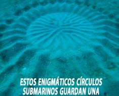Estos enigmáticos círculos submarinos guardan una hermosa historia