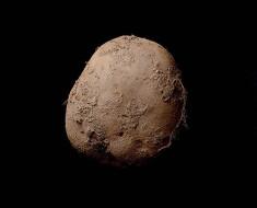 Esta foto de una patata fue vendida por más de 1 millón de dolares