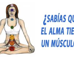 musculo del alma psoas ejercicios