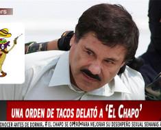 Una orden de tacos delató a El Chapo según New York Times
