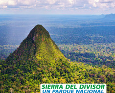 Sierra del Divisor, un parque nacional único en la Tierra