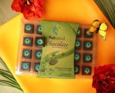 Instituto Politécnico Nacional de México crea chocolate para adelgazar